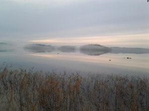 Puujärvi, Eeva H.